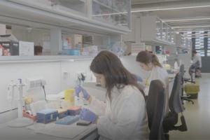 Institut Recerca Sant Pau Blog - Alting